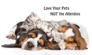 love-pets-not-allergies