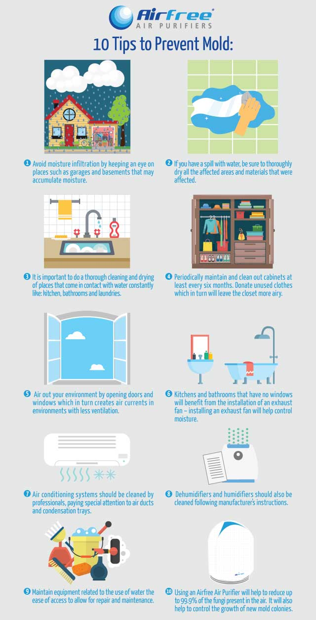 10 Tips to Prevent Mold